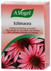 Echinacea halspastiller